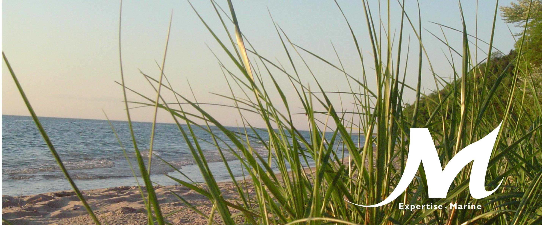 Aménagement du littoral